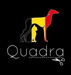 Logo quadra