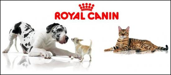royal-canin-4.jpg